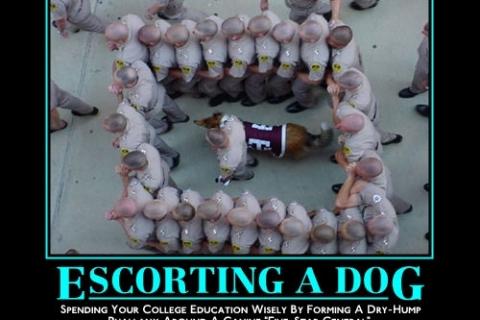 aggy_escorting_a_dog