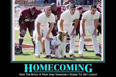 aggy_homecoming
