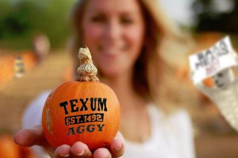 aggy_pumpkin